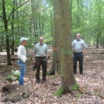 Steffi Lemke MdB, Christfried Behrends (Revierförster des Reviers Mahlpfuhl) und Andreas Kriebel (Leiter des Forstbetrieb Altmark)
