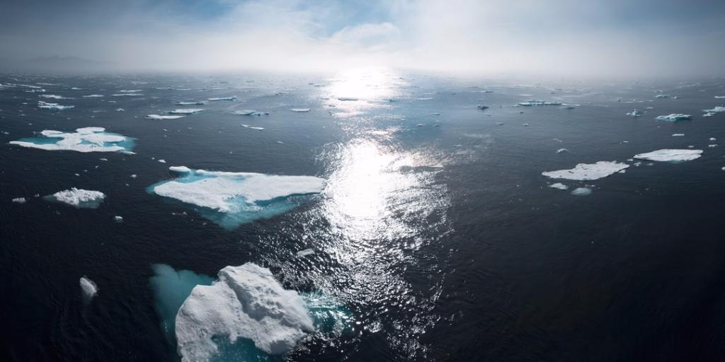 Aktionsplan Meeresschutz