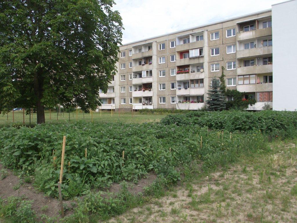 1. Tag - Dessau 8